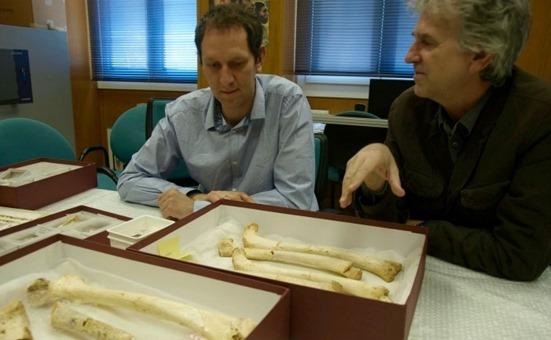 investigadores-junto-femur-400000-anos-encontrado-Atapuerca